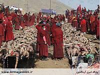 کشتار مسلمانان در میانمار